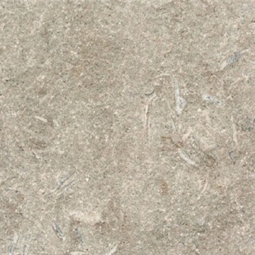 Fossil Green Marble tile cover image